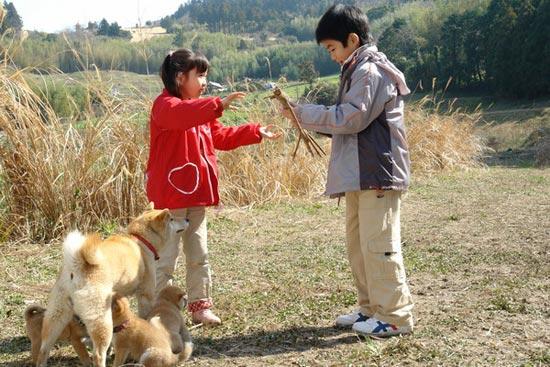 a tale of mari and three puppies เพื่อนซื่อ ชื่อ มาริ (2008)