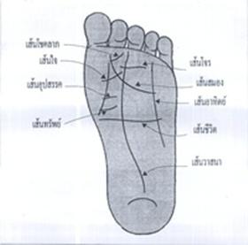 Image result for ลายเทà¹�า