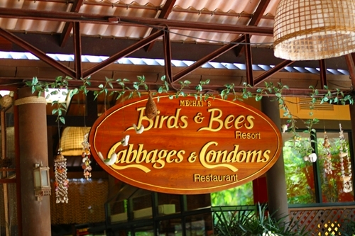 Image result for Birds & Bees Resort